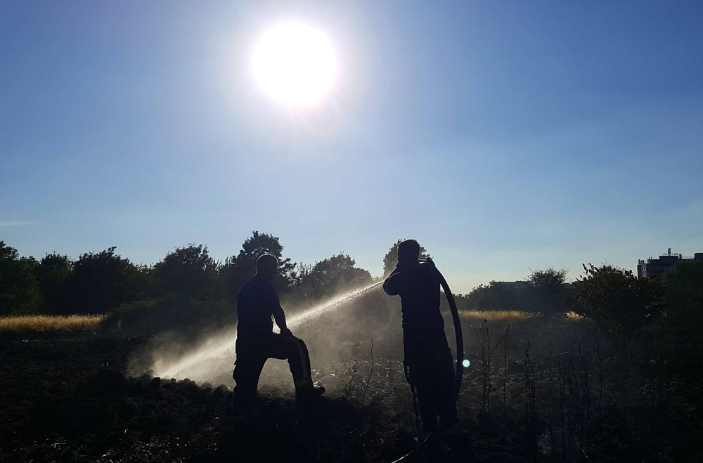 Firefighters tackle the grass fire on Woolwich Common
