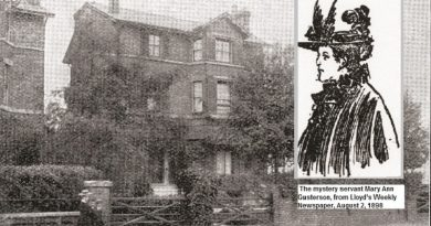 South London Memories: Was the servant involved in the death of widow?