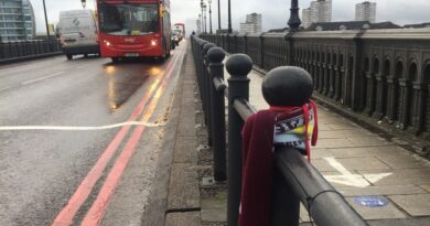Speed limit on Battersea Bridge lowered after jogger's fatal accident