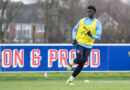 Which rising Palace stars shone in EFL Trophy at AFC Wimbledon – and which were anonymous. Ed Brack runs the rule over young Eagles