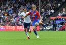 Crystal Palace boss gives his verdict on former Fulham and Lyon defender's start to life in SE25