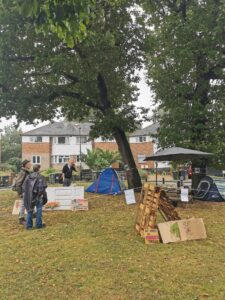 Lewisham tree campaigners camp out round the clock to stop fellers