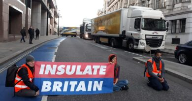 Insulate Britain protesters arrested after blocking Southwark Bridge